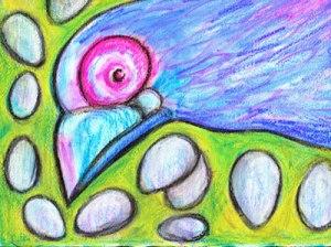 BirdEggs1