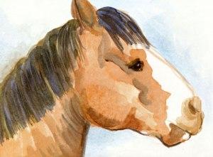 horseHead2