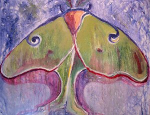 mothPaintings-016A