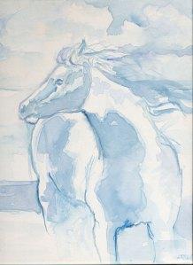 horseWind1